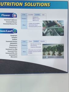 Micromix Seaweed Secondary and Trace Element Water Soluble Fertilizer pictures & photos
