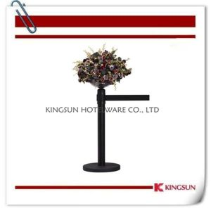 Stanchions With Display Bowl (BP-230G) pictures & photos