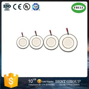 Piezoelectric Ceramics Curved Drive Plates pictures & photos