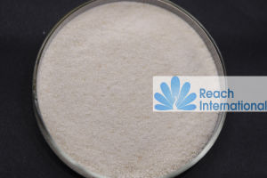 Hydroxypropyltrimethyl Ammonium Chloride Chitosan (HACC) pictures & photos