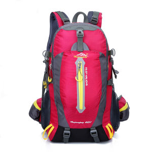 New Fashion Cheap High School Backpack pictures & photos