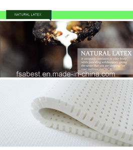 Natural Latex Euro Top Mattress pictures & photos