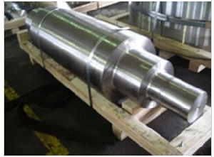 4130 Forging Roller/ Shaft pictures & photos