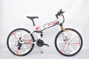 36V250W City Electrical Bicycle pictures & photos