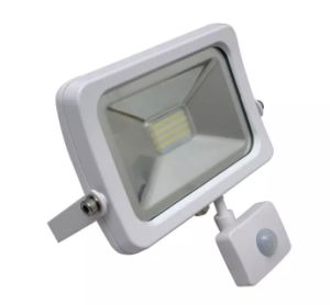 New 10W 50W 100W Outdoor COB SMD LED Flood Light / Waterproof IP65 Floodlight pictures & photos