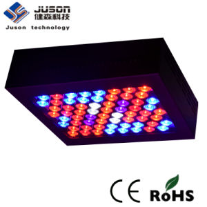Top Aluminum 5W Chip LED Grow Light 300W Full Spectrum pictures & photos