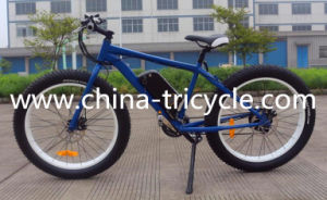 250W 26 Inch Tyre 36V10ah Battery for Electric Bike (SP-EB-20) pictures & photos