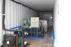 5 Tons Containerized Block Ice Maker with Cold Room for Africa pictures & photos