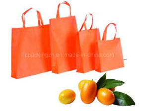 Promotional Customized Logo Shopping Nonwoven Bag for Supermarket (HC00150608001) pictures & photos