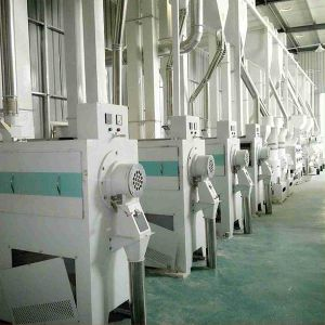 30 -150 Ton/ Day Complete Rice Processing Machine pictures & photos