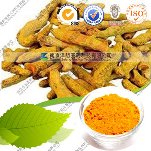 Manufacturer Permanent Makeup Pigment Turmeric Curcumin 95% pictures & photos