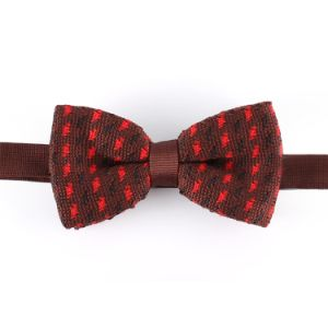 Men′s New Design Fashion Knitted Bowtie (YWZJ 80) pictures & photos