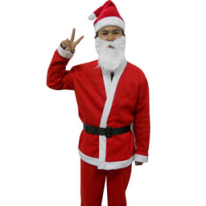 Good Quality Cheap Price Christmas Costume pictures & photos