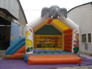 Commercial Use Inflatable Bouncer with Carton Printing (A145) pictures & photos
