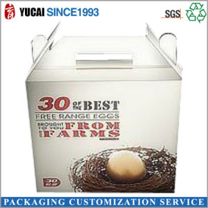 Food Packaging Box Paper Carton Box pictures & photos