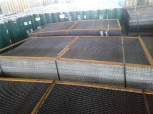 Annealed Iron Reinforcing Welded Wire Mesh Panel pictures & photos