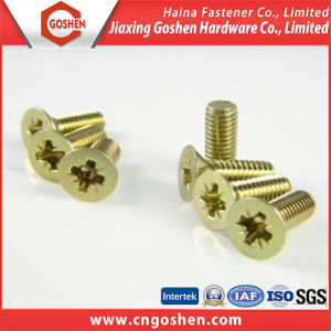 Customized Brass M Word Trough Head Machine Screw pictures & photos