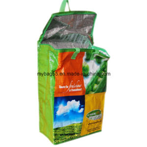 OEM Disposable Insulated Zipper Cooler PP Woven Bag pictures & photos