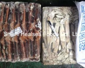 Whole Round Frozen Illex Squid 200-300g pictures & photos