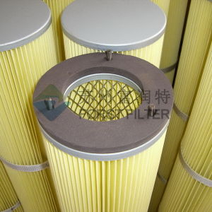 Forst Polyester Pleated Cement Plant Filter Cartridge pictures & photos