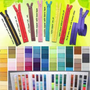 15 Years Factory Experience Custom Rainbow Teeth Zipper pictures & photos