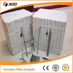 1425 C Ceramic Fiber Module
