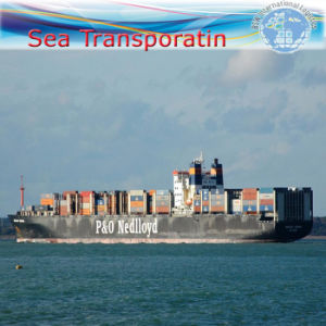 Sea Freight, International Shipping Container, Sea Shipment (FCL20′′40′′) pictures & photos