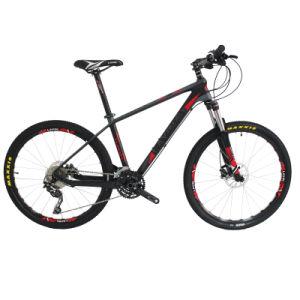 Best All Carbon Fiber Mountain Bike Sales Online pictures & photos