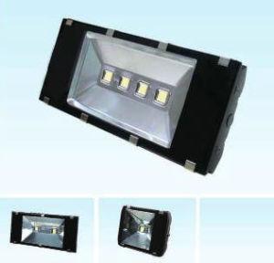 (200W/140W/100W/80W) LED Flood Light (640/570/370TG) pictures & photos