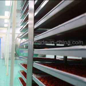 Medlar Lbp Ecocert Certificate Organic Goji Berry pictures & photos