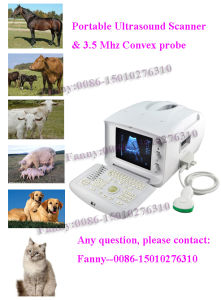 Veterinary Portable Ultrasound Scanner Vet Ultrasound Machine -Fanny pictures & photos