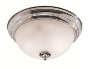 Moderm Simplism Style Ceiling Light (7117-05)