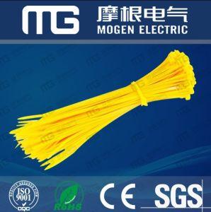 Nylon66 Self-Locking Plastic Cable Tie pictures & photos