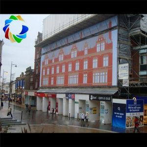 Large Format Digital Printing Custom Wall Banners pictures & photos