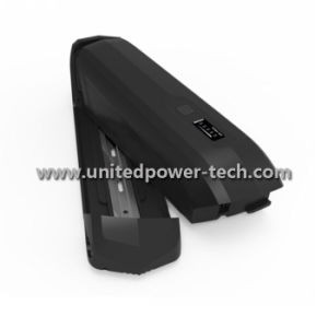 Lithium Ion LiFePO4 Rechargeable Battery pictures & photos
