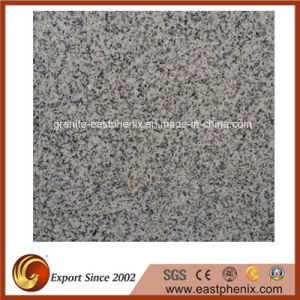 Popular New G603 Granite Stone Tiles for Wall/Flooring Tile pictures & photos