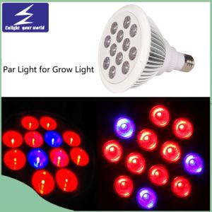 85-265V 24W LED PAR Growlight