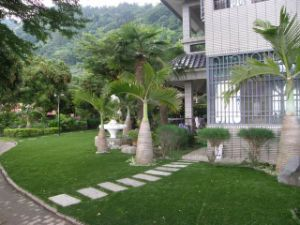 Leisure Synthetic Turf for Landscaping pictures & photos