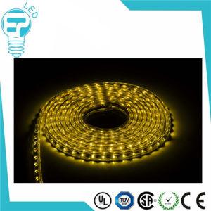50m LED Strio Light SMD 3528 Waterproof LED Lighting 220V LED Strip pictures & photos