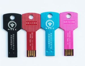 Branding Logo Key Shape USB Flash Memory Produce with Competitive Price pictures & photos