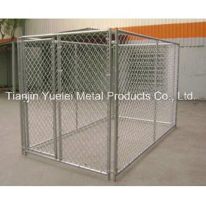 Galvanized Steel Outdoor Full Size Chain Link Box Kennel 10 X 10 pictures & photos