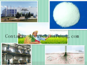Agricultural Chemicals Bactericide Bactericide Agrochemical Fungicide 119446-68-3 Difenoconazole pictures & photos