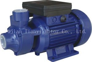 Peripheral Pumps Idb Series pictures & photos