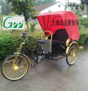 Richakshaw Passenger Tricycle pictures & photos