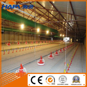 Automatic Broiler Poultry Control Shed Equipment From Qingdao, China pictures & photos