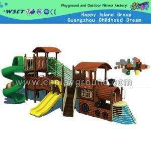 Amusement Park Train Model Outdoor Playground for Sale (M11-02202) pictures & photos