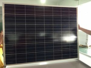Grade a High Quality Solar Panel with TUV IEC Certificates