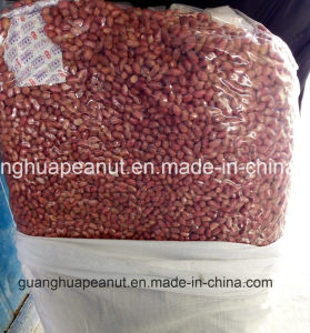 Hot Sale Red Skin Peanut Kernel pictures & photos
