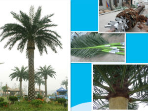 High-Quality Camouflaged Palm Tree Tower for Telecom 20m pictures & photos