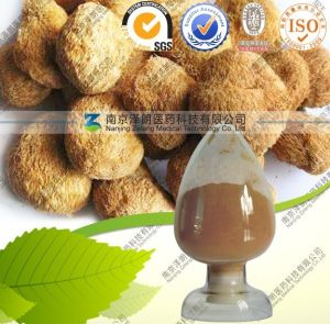 Factory Produce Natural Plant Extract Powder 4: 1 Hericium Extract pictures & photos